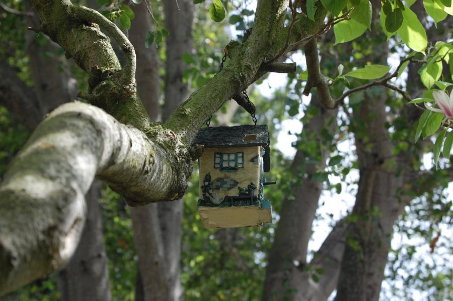 To better ensure home safety, it's important to assess the health of nearby trees. Photo: Ponderosa Tree Service (2013)