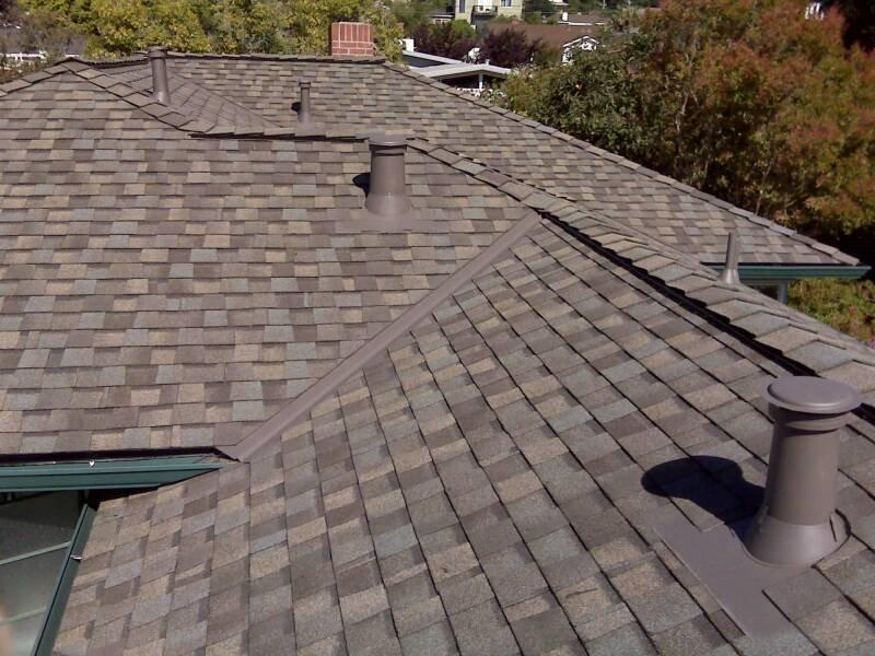 While not a threat to your roof's integrity, algae and mold buildup on shingles can be an unwelcome eyesore. Photo: Ross Roofing & Construction, Inc. (2014)