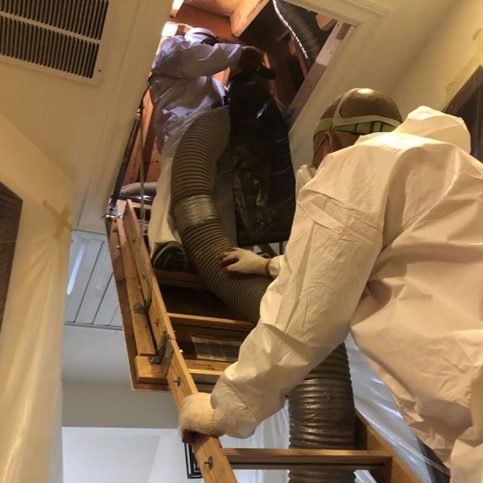 Alameda County Attic And Crawl Space Cleaning Diamond