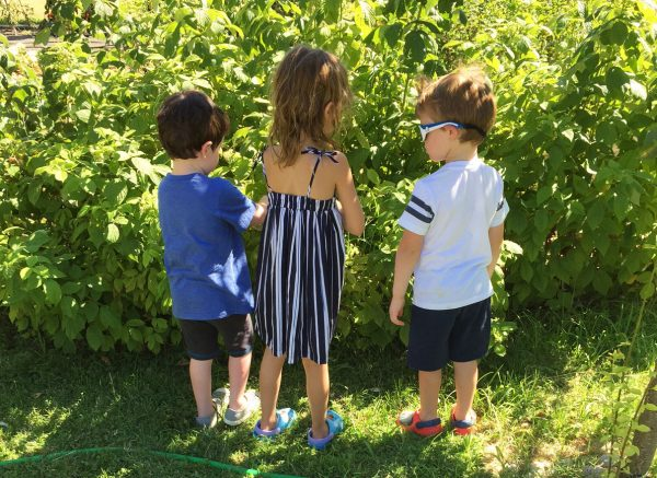grandchildren enjoying the summer outdoors